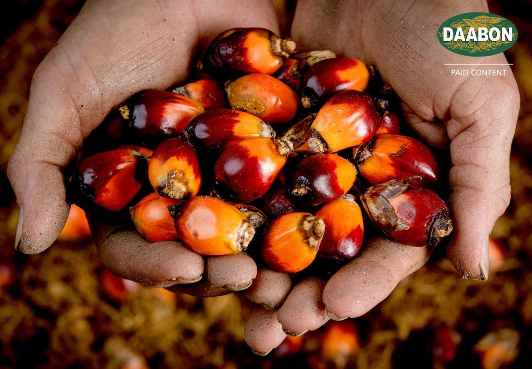 sustainable palm ingredient